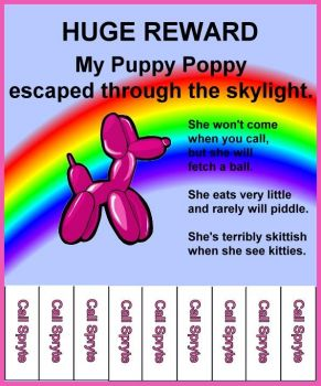 Lost Puppy Poppy