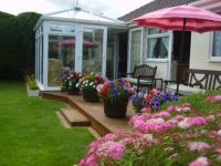 My garden in summer