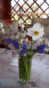 2021-05-09   Jarní kytice