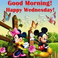 It's Wednesday!