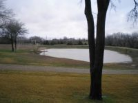 My Front Pond: In January of 2012 after rains