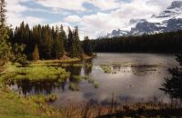 Johnson Lake, Banff NP