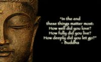 In-the-end-these-things-matter-most-How-well-did-you-love-How-fully-did-you-live-How-deeply-did-you-let-go-Quote-by-Buddha