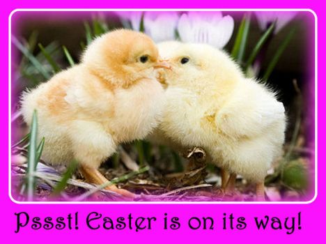 Pssst!  Easter is on its way.