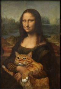 Mona's cat