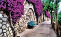 Nature promenade