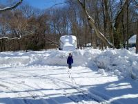 New England Blizzard of 2015