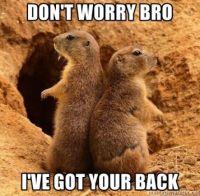 I've Got Your Back #4