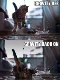 oh gravity