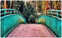 Over the Bridge and into the Woods