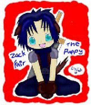 zack fair the puppy