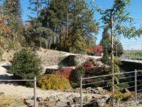 Arboretum Nový Dvůr cz