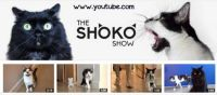Does anyone else subscribe to the shoko show?