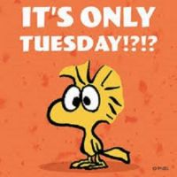 It's only TUESDAY!