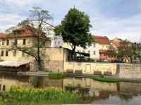 Pilsen in spring, Czechia