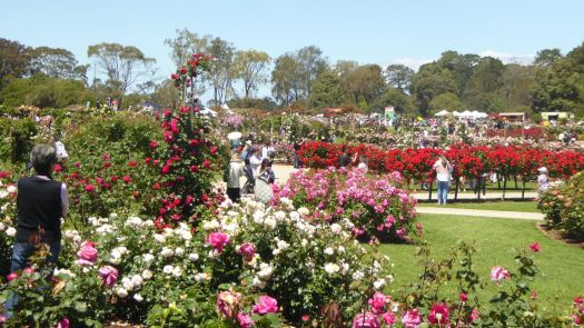 Werribee South, Victoria, Australia