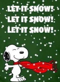 LET IT SNOW (especially in the northeast)