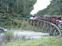 Puffing Billy - Belgrave