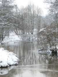 Winter am Geroldsbach, Bayern