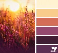 ColorNature