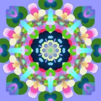 Just For Fun Kaleido - February 9