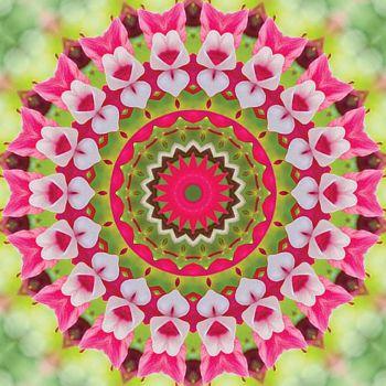 kaleidoscope 321 magnolia hearts large