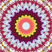 kaleidoscope 425 colours small