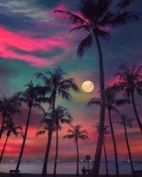 Dreamy night in Singapore  5510