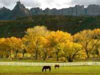 Autumn Pastures-Smaller