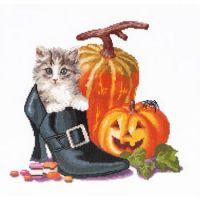 Thea Gouverneur's Halloween Kitten