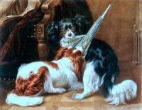 A Dispute - King Charles Spaniels by Benno Adam (1812-92)