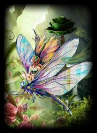 butterfly fairy on dragonfly