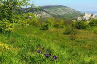 Pálava - Stolová hora