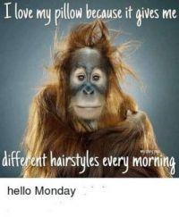 Hello Monday....