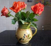 Roses in a Jug (4)