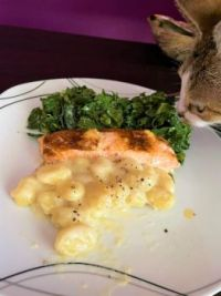 Salmon, kale Caesar, gorgonzola gnocchi, innocent bystander