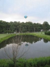 Hot air balloon over the pond