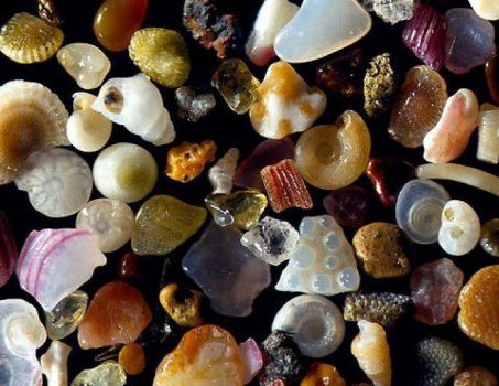 Grains of sand magnified 250 times