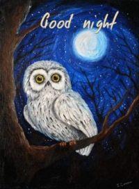 Good night and sweet dreams!