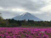 Perfect Mt. Fuji