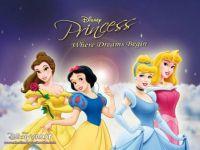 Disney-Princess-Wallpaper-disney-princess-6475195-1024-768