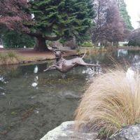 Queenstown Rose Gardens, NZ
