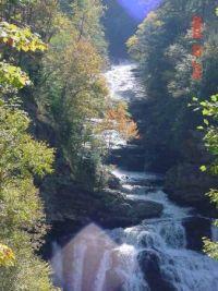 North Carolina Stream in the Fall