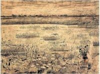 Vincent van Gogh - Marsh with Water lilies - 1881