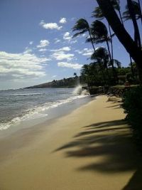 Just Another Maui Beach Day