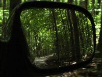 rearview...