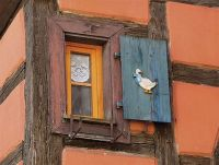 okenice s husou/shutters with goose