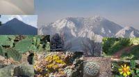 Boulder, CO outdoors.