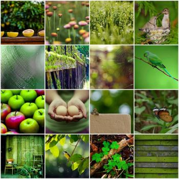 spring green by fun monitor on flickr