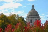 Our beautiful State Capital building in fall colors
